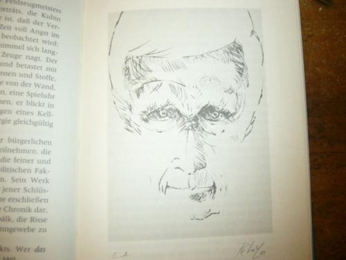 Jünger-Portrait von Orlando Pelayo