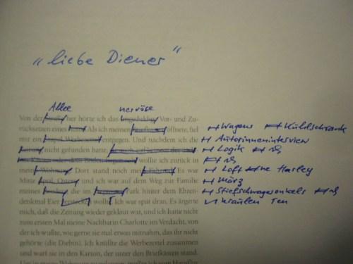 Liebe Diener, neuer Roman von T. Wimbauer