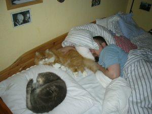 Wimbauer und Co im Schlafe